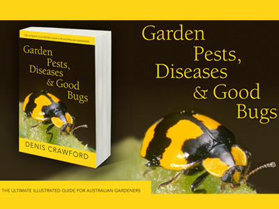 Garden-Pests-Diseases-and-Good-Bugs-by-Denis-Crawford