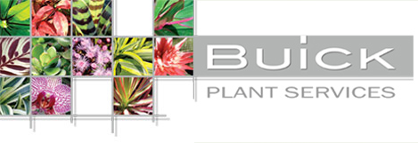 Buick-Plant-Services