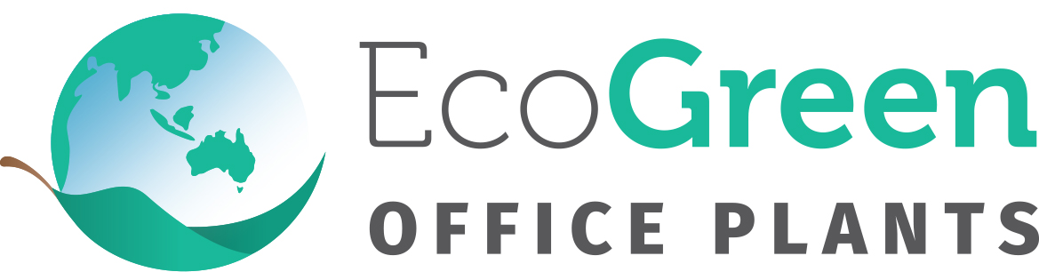 Eco-Green-Office-Plants