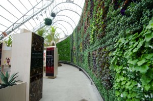 RBGS Green Wall-27-HR (2)