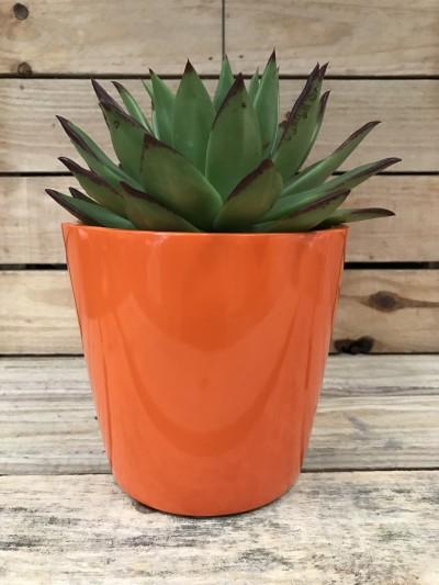 just add plants mini-planter