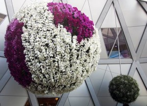 Large orchid and succulent-decorated balls resembling Japanese-style Kokedema hang from another pedestrian walkway.