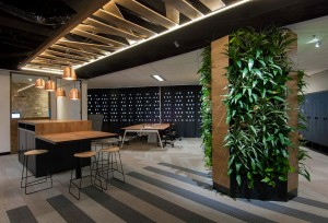 Wall divider - Green Design, NSW