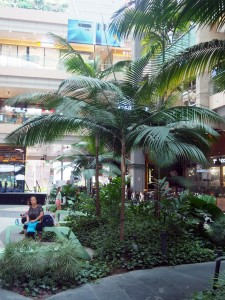 Patrons relax in Westgate's interior courtyard