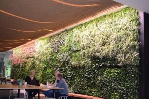Greening Our City: 485 La Trobe Street