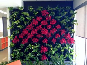 Christmas Green Wall'
