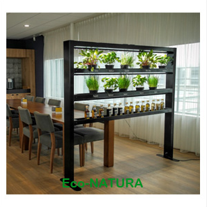 Eco-Natura: An indoor growing system (Image: Parus)