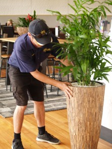 Green Design NSW (1)-min