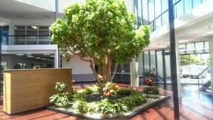 Plantscape Interiors SA