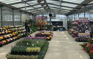 Making 'scents' at the 2020 Australian Horticultural Trials Week